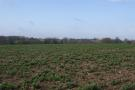 Farm Land in HOCKERING, NR20 3RT for sale