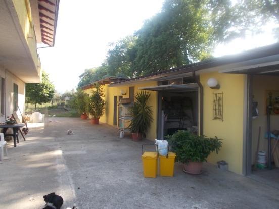 Drive and garage