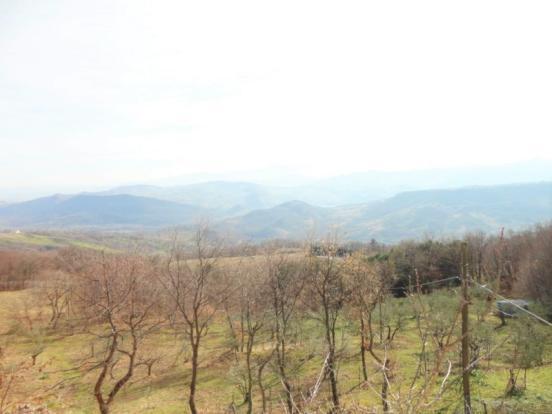 Panoramic wiev