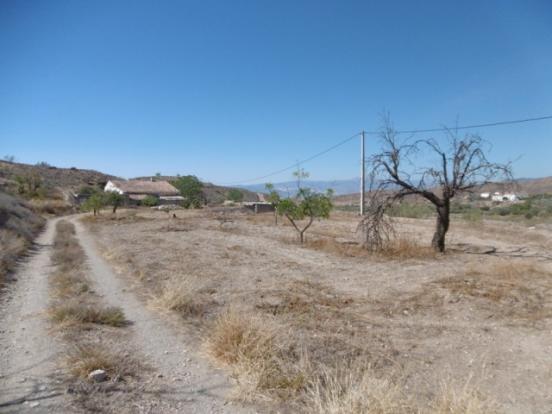 Land and views