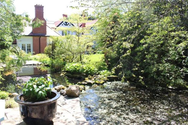 Garden View 11