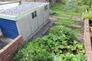 View of rear garden