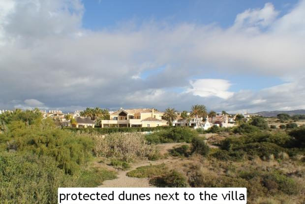 protected dunes next