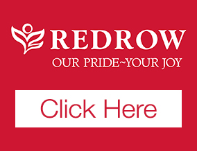 Get brand editions for Redrow Homes, Stone Brook