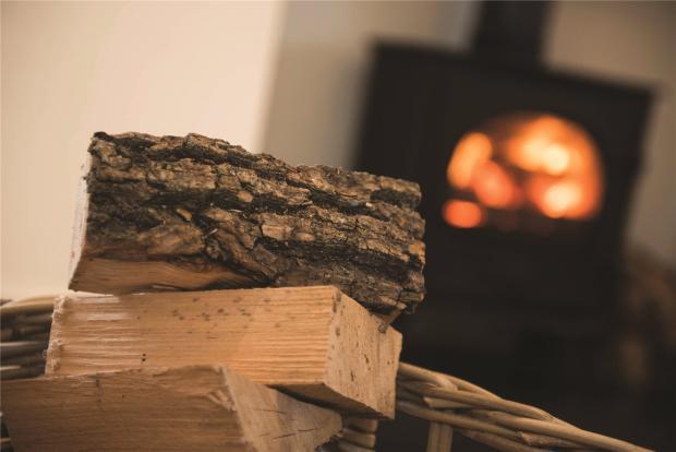 Example Woodburner
