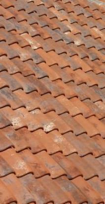 Roof Tile.jpg