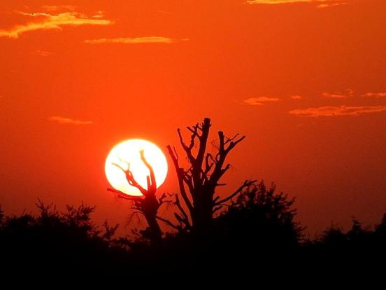 SUNSET FROM REAR.jpg