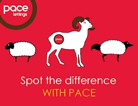 Get brand editions for Pace PLC, Southend-on-Sea Lettings