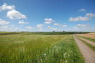 Farm Land in Tathwell, Louth