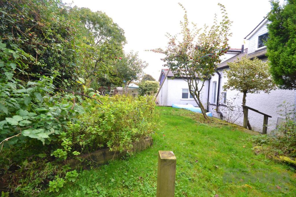 Back Garden (5).jpg
