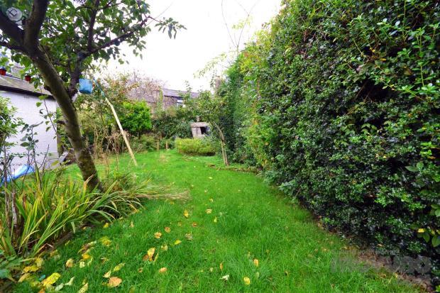 Back Garden (7).jpg