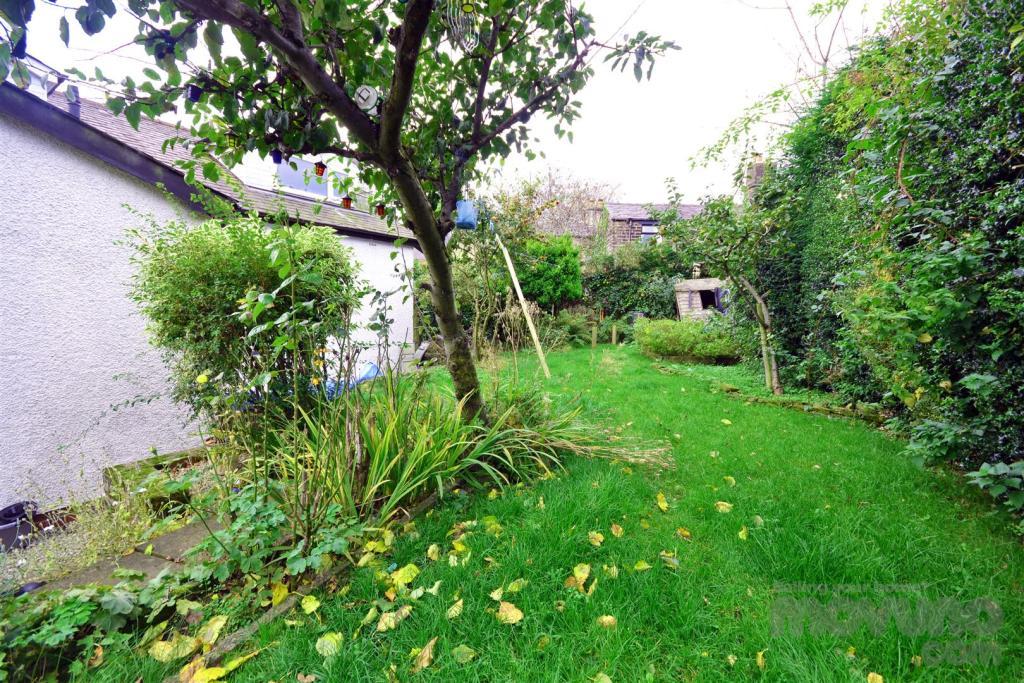 Back Garden (8).jpg