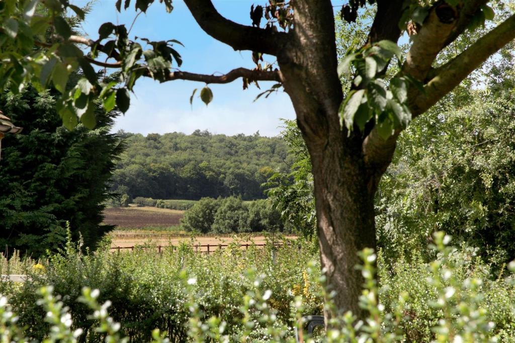 Views across fields