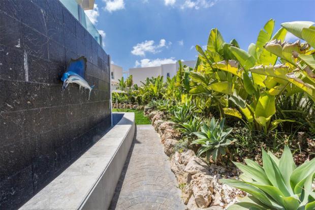Walkway with Garden
