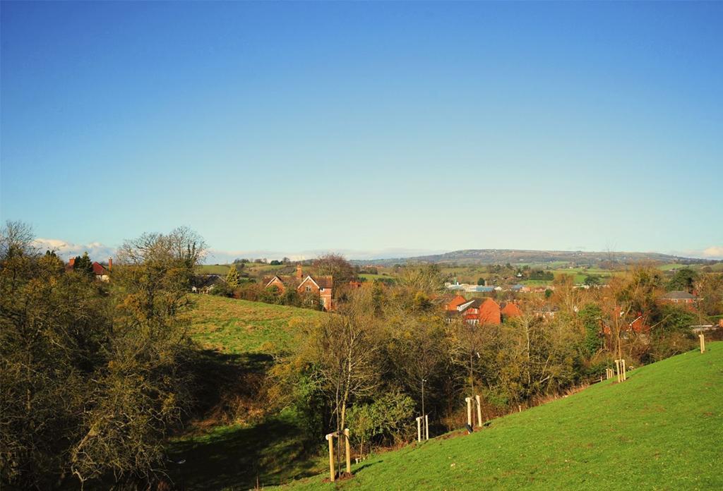 Tenbury View