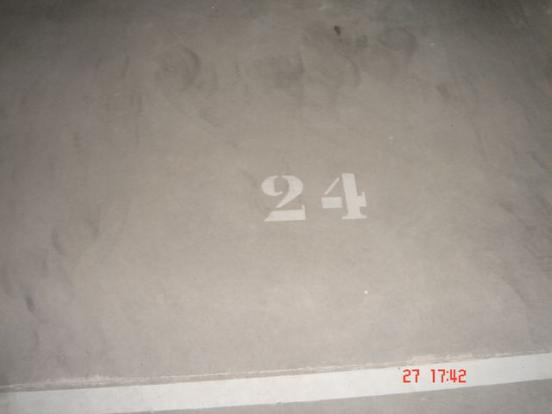Picture 28