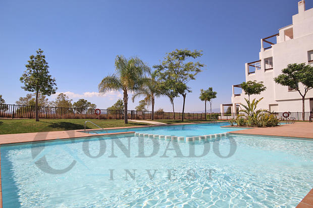 Penthouses pool