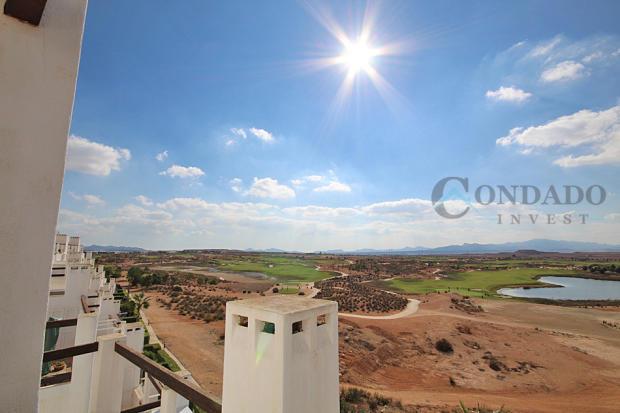 View - terrace