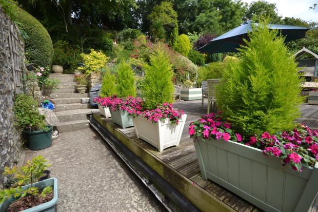 Garden 2.JPG