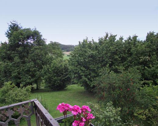 Garden areas
