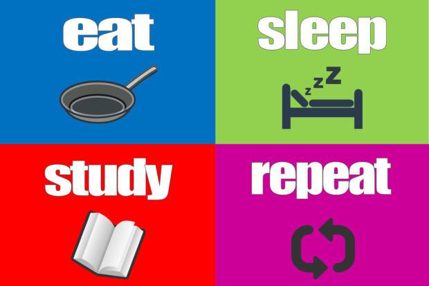 Eat Sleep Study R...