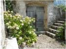 Ruins in Boka Kotorska