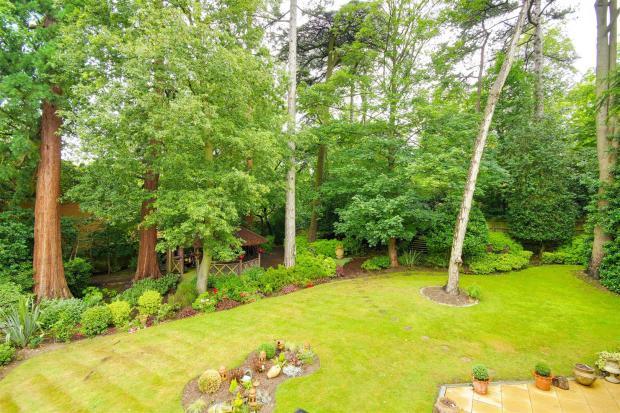garden aeriel.jpg