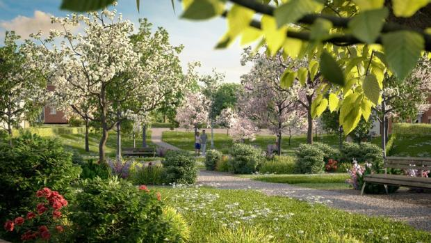 CGI Orchard Park