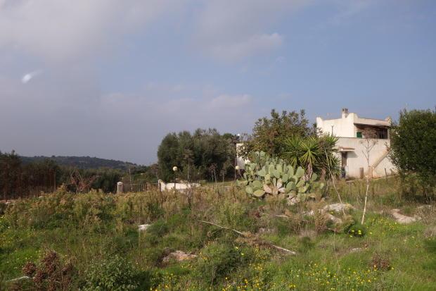 View to garden entra