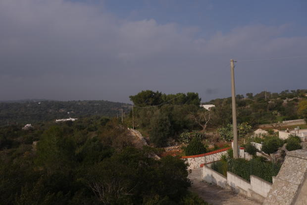 Views frm roof terra