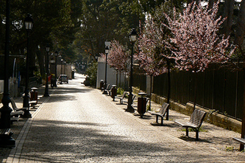Selva village street