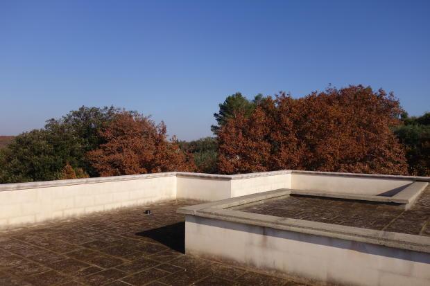 80 sq m terrace