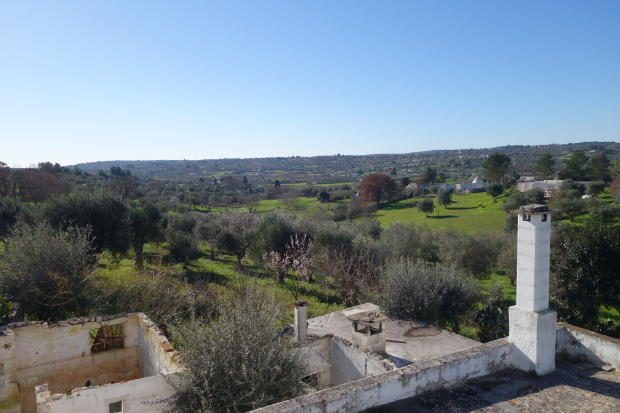 View from terrace 3