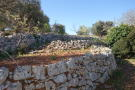 Lower garden wall