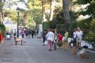 Selva main street