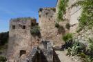 Medical castle walls