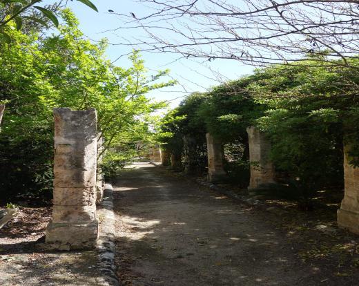 The lower terrace