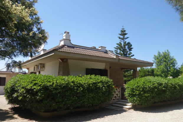 View to main house