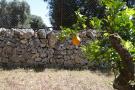 Fine stone walls