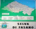 Selva area map