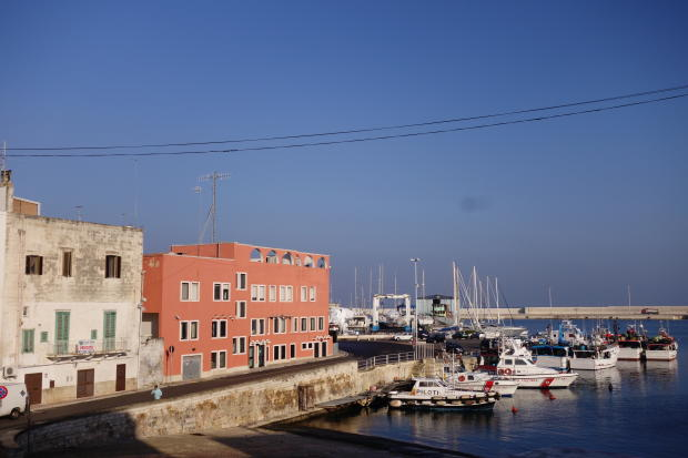 View to harbour