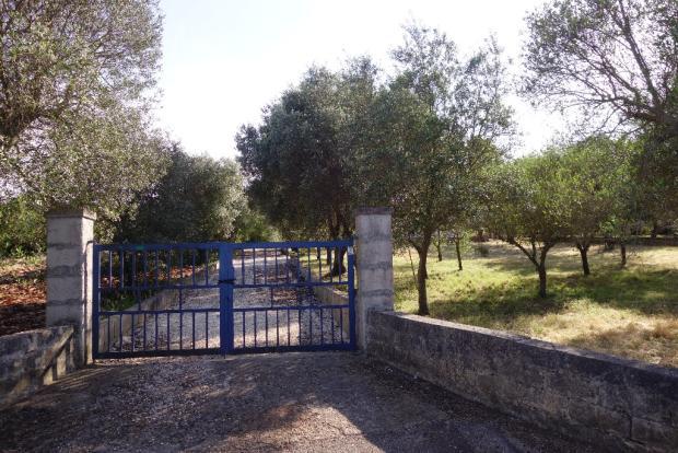 The gate entrance