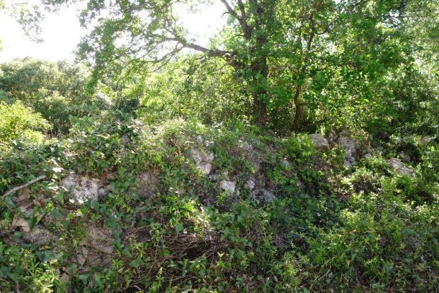 The rear stone wall