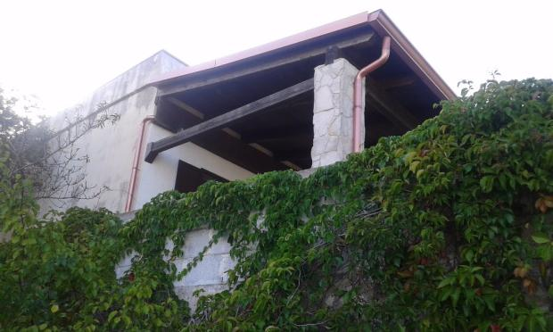 Ivy up to veranda
