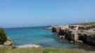 A bay