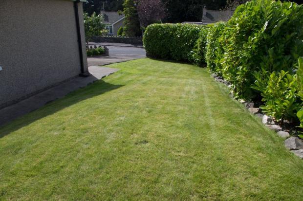 Lawn to side aspe...