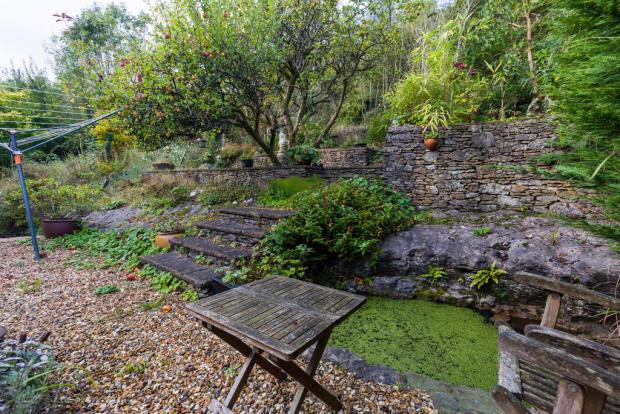 Rear garden and p...