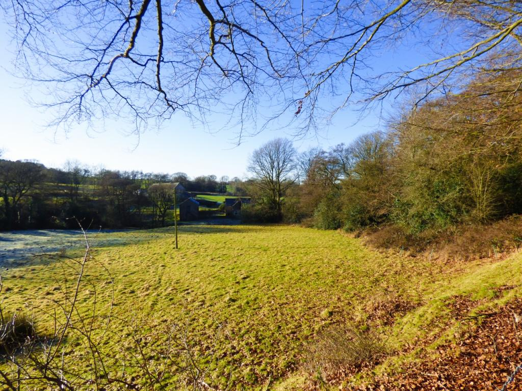 View from Legh Road