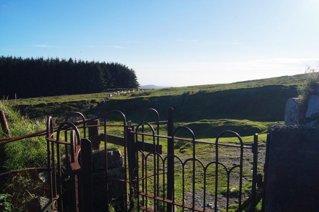 Gate to moorland ...