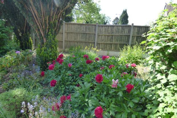Cottage Garden, H...